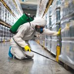 Pest Control Services: Commercial Pest Control for Warehouse