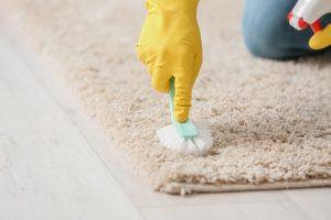 membersih kotoran di karpet